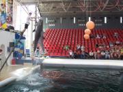Delfinarium - Výlety - Bulharsko - 07