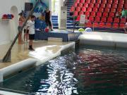 Delfinarium - Výlety - Bulharsko - 11